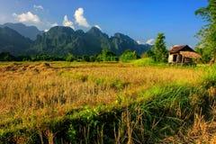 Capanna del ` s dell'agricoltore su un campo in Vang Vieng, provincia di Vientien, Laos Fotografie Stock Libere da Diritti