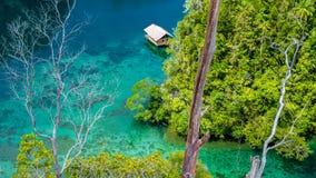 Capanna di bambù in mangrovia vicino all'alloggio presso famiglie di Warikaf, alla baia di Kabui ed al passaggio Gam Island, Papu Immagine Stock Libera da Diritti