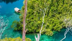 Capanna di bambù in mangrovia vicino all'alloggio presso famiglie di Warikaf, alla baia di Kabui ed al passaggio Gam Island, Papu Fotografie Stock Libere da Diritti