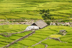 Capanna di Karen in vietnam del nord Fotografia Stock Libera da Diritti
