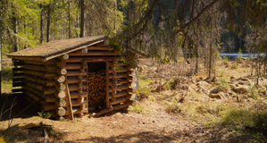 Capanna di legno nei precedenti soleggiati della foresta Fotografia Stock Libera da Diritti
