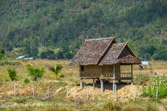 Capanna di legno nella campagna del giacimento del riso Fotografie Stock