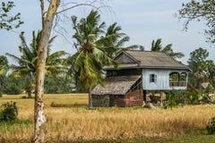 Capanna di legno sui trampoli nel paesaggio cambogiano rurale Immagini Stock