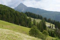 Capanna di legno sul pendio alpino Fotografia Stock Libera da Diritti