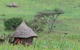 Capanna etiopica del villaggio Immagini Stock