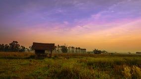 Capanna fatta di bambù piantato nel giacimento del riso, Tailandia Fotografia Stock