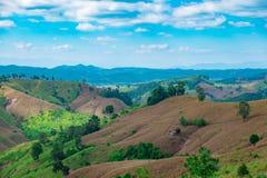Capanna fra l'azienda agricola del cereale nella provincia di Nan Fotografia Stock
