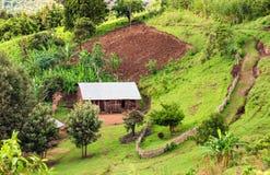 Capanna nella riserva della foresta di Bonga in Etiopia del sud Immagini Stock