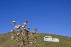 Capanna nelle montagne di Lessini del parco naturale fotografia stock