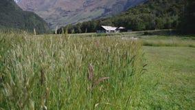 Capanna pacifica della montagna in Nuova Zelanda video d archivio