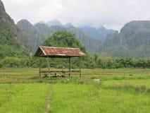 Capanna su un giacimento del riso in Asia Fotografie Stock