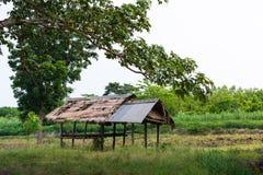 Capanna tailandese dell'agricoltore Fotografia Stock Libera da Diritti