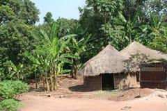Capanna tatched africana, Uganda Immagini Stock