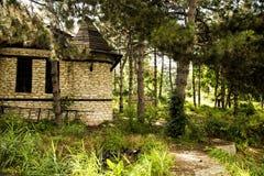 Capanna verde in foresta immagini stock libere da diritti