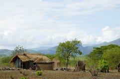 Capanne africane - Tanzania Fotografia Stock Libera da Diritti