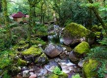 Capanne alla giungla tropicale fotografia stock