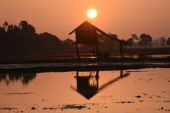 Capanne asiatiche sudorientali della zona umida della siluetta della lampadina della foto Immagine Stock Libera da Diritti