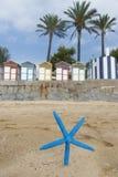 Capanne variopinte della spiaggia e stelle marine blu fotografia stock