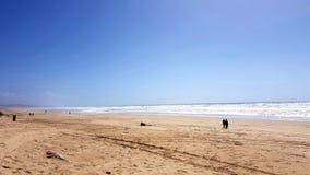 Caparica beach in Portugal royalty free stock photo