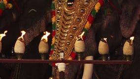 Caparisonedolifanten bij nacht, Poonam, Kerala stock video