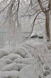 capas heladas en orilla del lago Imagenes de archivo