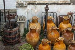 Capasone och vinpress Royaltyfri Fotografi