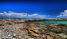 Cape Agulhas National Park Royalty Free Stock Photo