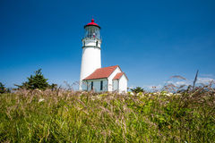 Cape Blanco Lighthouse with native grasses. Native grasses positioned in front of the Cape Blanco lighthouse in Oregon stock photography
