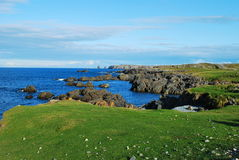 Cape Bonavista Royalty Free Stock Photo
