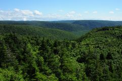 Cape Breton Highlands - Nova Scotia Stock Images