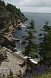 Cape Breton Shoreline. Shoreline of Cape Breton Island in Nova Scotia Royalty Free Stock Photo