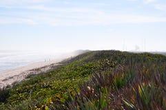 Cape Canaveral Strand Lizenzfreie Stockbilder