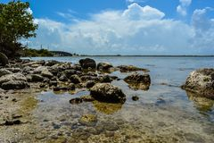 Cape Canaveral strand Arkivbild
