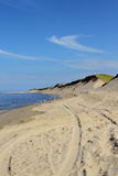 Cape Cod Beach royalty free stock images