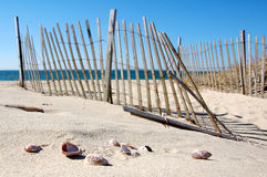 Cape Cod Beach. With Fence and Sea Shells Stock Photo
