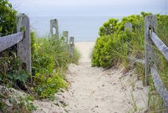 Cape Cod Beach Pathway. A beach pathway leading to the sea on Cape Cod in Massachusetts Royalty Free Stock Photography