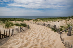 Cape Cod Beach Pathway in Provincetown Massachusetts. Empty pathway to the beach on a clear summer day in Provincetown, Cape Cod, Massachusetts Royalty Free Stock Image