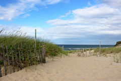 Cape Cod Beach. A pathway to the beach through the dunes at head of the Meadow Beach, Truro, Cape cod stock photo