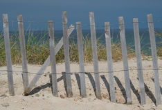 Cape Cod Beach. Sand Dune Cape Cod Beach Royalty Free Stock Photo