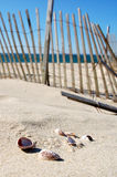 Cape Cod Beach Scene. Cape Cod Beach Fence and Sea Shells stock photography