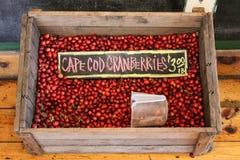 Cape Cod Cranberries. Crate of fine red Cape Cod cranberries Stock Photo