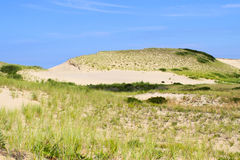 Cape Cod Dunes Royalty Free Stock Photography