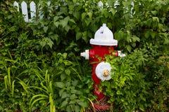 Cape Cod fire Hydrant Massachusetts US Stock Images