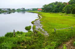 Cape Cod Marshland Stock Photography