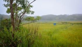Cape Cod marshland (2) Royalty Free Stock Photography