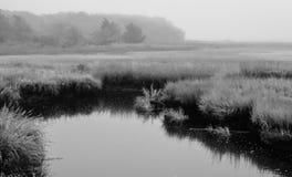 Cape Cod marshland Royalty Free Stock Photo