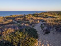 Cape Cod National Seashore Cliffs at Goldenhour stock photo