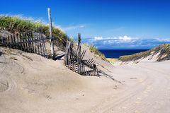 Cape Cod National Seashore Nature landscape royalty free stock image