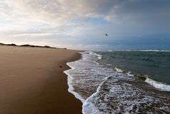 Cape Cod in November. Deserted beach in cloudy weather, Cape Cod, Massachusetts royalty free stock photo
