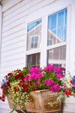 Cape Cod Provincetown Massachusetts de V.S. Stock Foto's